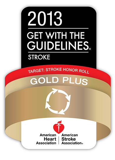 American Stroke Association's Get with the Guildelines-Stroke (GWTG-Stroke) Annual Performance Achievement Award
